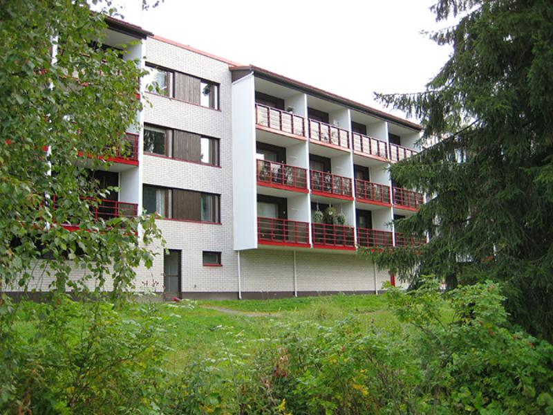 rinnepolku3